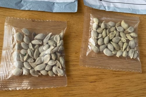 Amazon prohibits the sale of foreign seeds in the United States