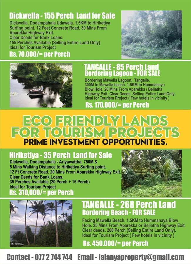Down South - Eco Friendly Lands For Tourism Projects