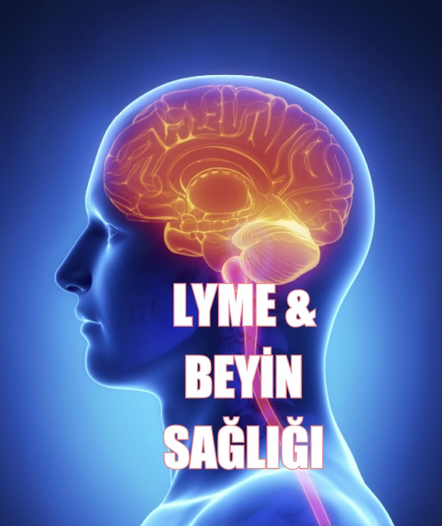 Beyin kanaması ile Etiketlenen Konular