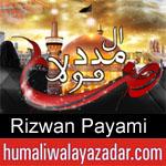 https://humaliwalaazadar.blogspot.com/2019/08/rizwan-payami-nohay-2020.html