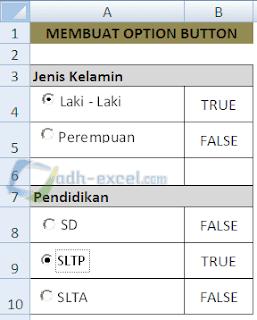 Option Button ActiveX Controls Excel