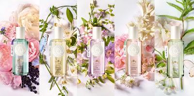 Wishlist parfums Notino