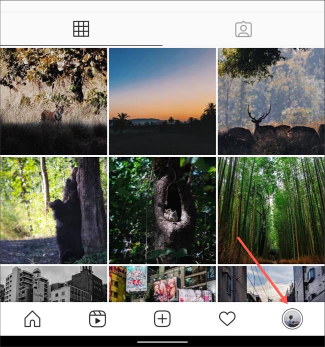 قم بزيارة علامة تبويب الملف الشخصي في تطبيق Instagram