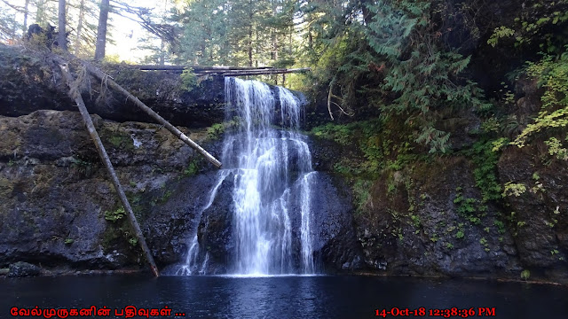 Upper North Falls in Trail of Ten Falls Oregon