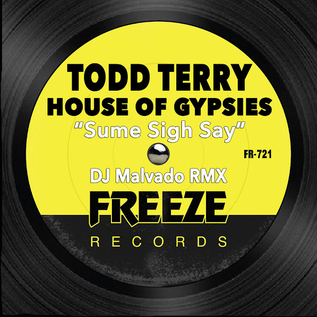 http://www.mediafire.com/file/8iktph6uqrddy41/Todd_Terry__House_Of_Gypsies_-_Sume_Sigh_Say_%2528Dj_Malvado_RMX%2529.mp3/file