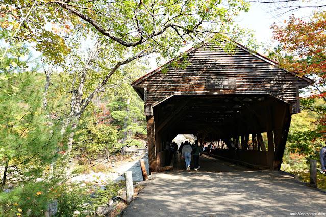 Albany Covered Bridge en White Mountain