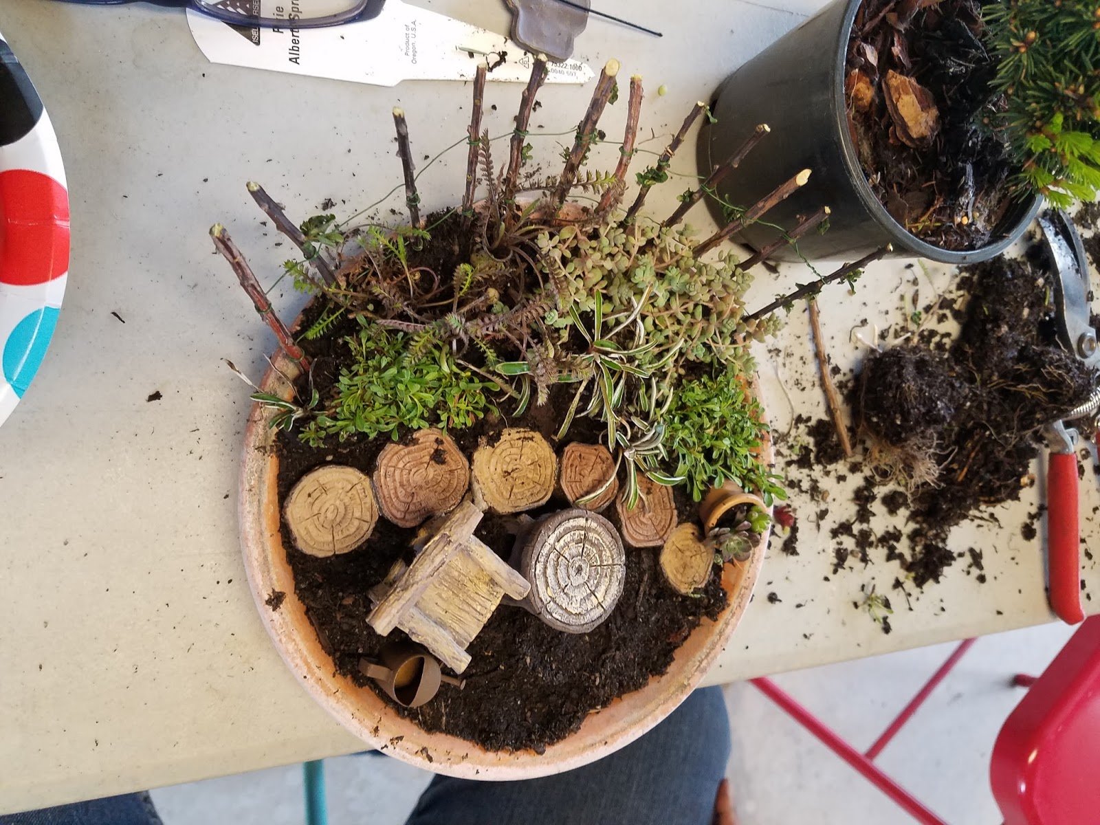 Windmill Farm: KIDS AT FAIRY GARDEN CLASS MADE IT SO MUCH FUN