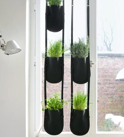 du design pour les plantes d 39 int rieur. Black Bedroom Furniture Sets. Home Design Ideas