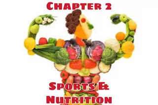 class-12-physical-education-notes-chapter-2-nutrition