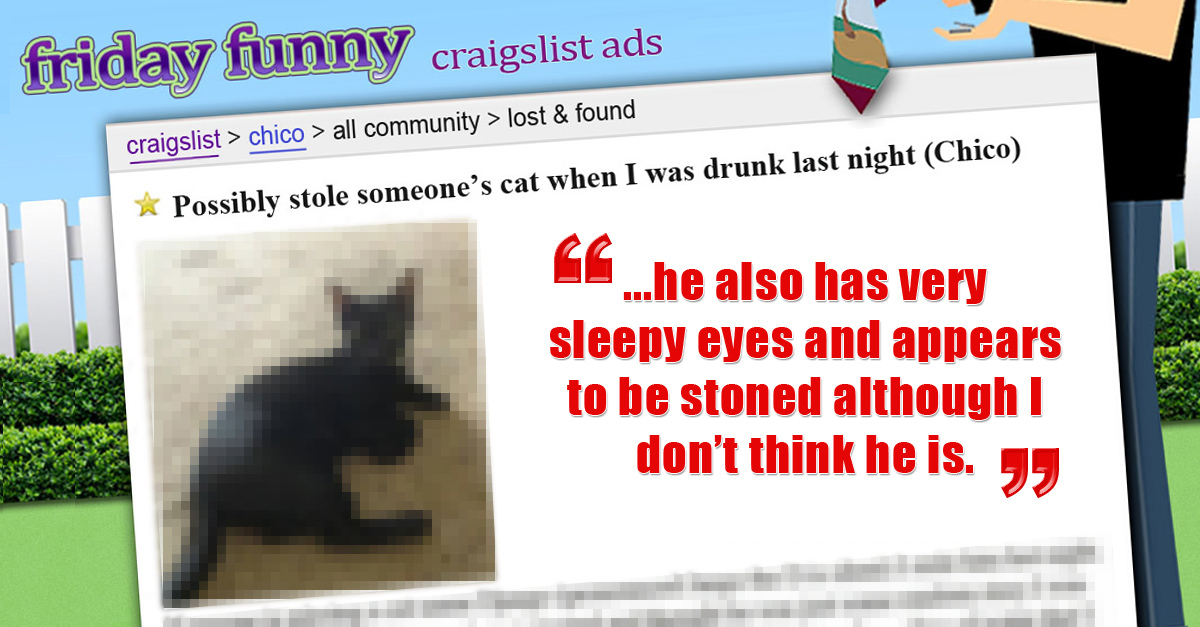FUNNY CRAIGSLIST ADS: Sorry drunk accidentally stole cat (Preview)