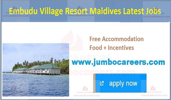 Maldive latest jobs and careers,