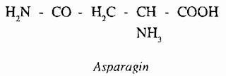 Thành phần hóa học THIÊN MÔN ĐÔNG - Asparagus cochinchinensis - Nguyên liệu làm thuốc Chữa Ho Hen