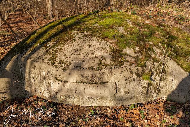 Point d'appui corne sud-est de l'Oberwald
