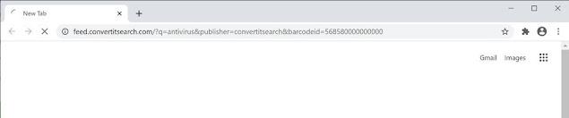 ConvertItSearch (Hijacker)