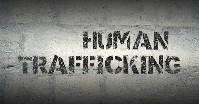 Human trafficking: Reps member accuses Labour Ministry of aiding dehumanising conditions of Nigerians abroad