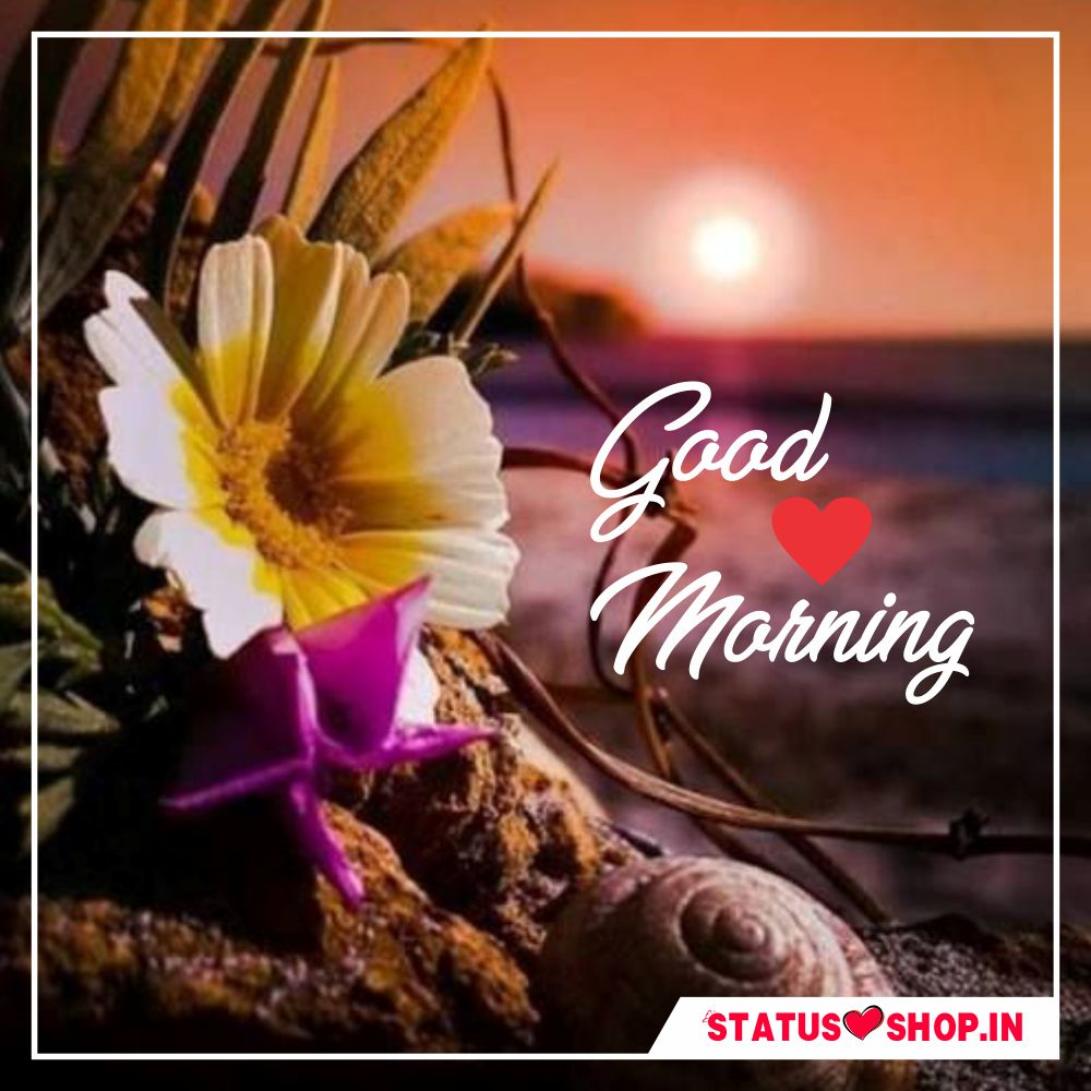 Love-Good-Morning-Image