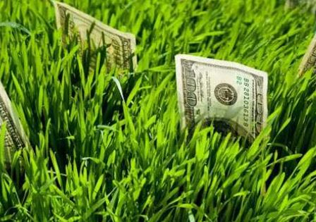 cara investasi tanah dengan modal kecil