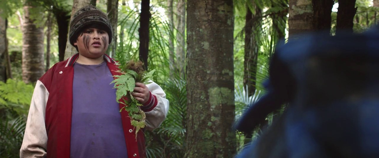 Hunt for the Wilderpeople (2016) 2