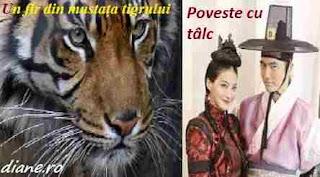 Un fir din mustața tigrului: Poveste cu tâlc