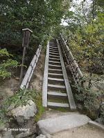 Stone stairs, Kinkaku-ji Garden - Kyoto, Japan