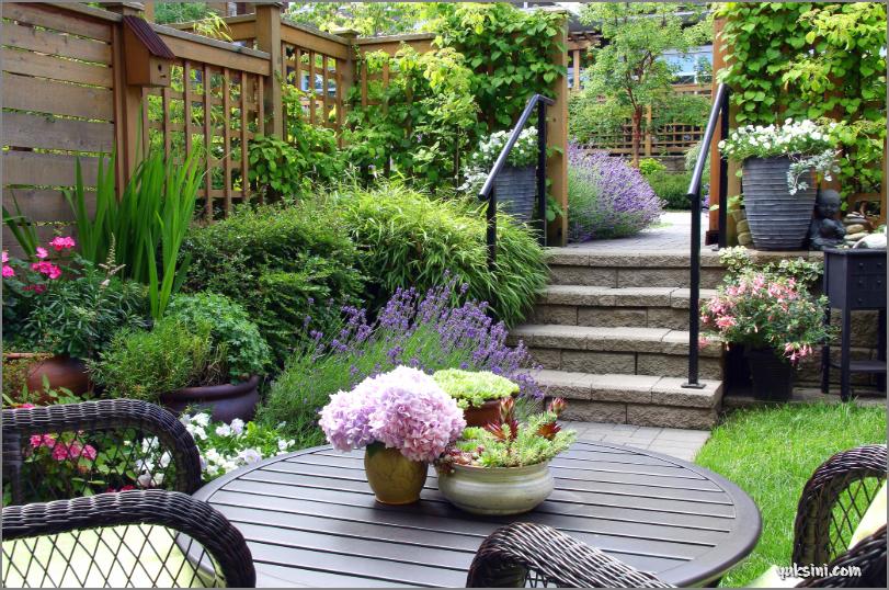 mengubah teras rumah menjadi taman minimalis