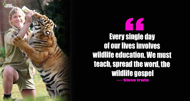 Steve Irwin Quotes About Animals
