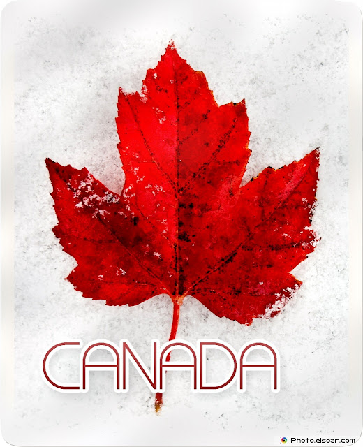 Canada Day Greeting Cards & Ecards