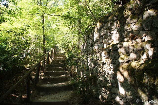 Uno dei sentieri che si articolano nel Sacro Bosco
