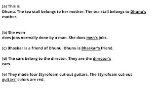 Dhunu's Guitar Questions and Answers   Class 7   Lesson 6   English