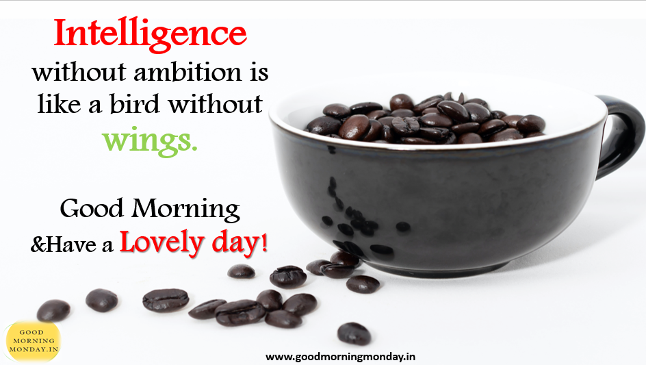 """""""good morning images with quotes hd"""" """"good morning images with inspirational quotes in hindi"""" """"good morning images with quotes for whatsapp"""" """"good morning images with positive words"""" """"beautiful good morning images with quotes"""" """"good morning quotes with images"""" """"amazing good morning images with quotes"""" """"extraordinary good morning quotes"""""""
