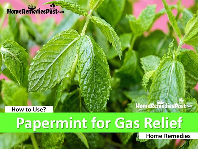 Peppermint for gas, home remedies for gas relief fast, how to get rid of stomach gas, how to use peppermint for gas relief fast,
