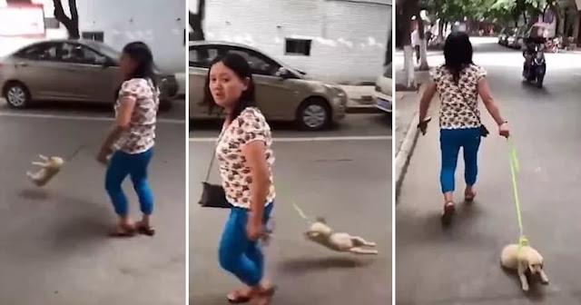 В Китае женщина тащила и бросала своего щенка как сумочку по асфальту