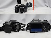 Prosumer Sony H300