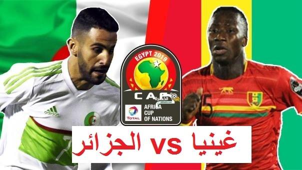 مشاهدة مباراة الجزائر وغينيا بث مباشر Live : guinea  v algeria