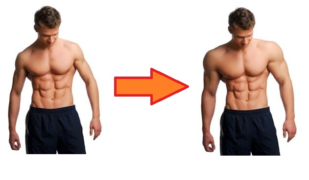 What is Muscle Hypertrophy? | Physiotherapy Information