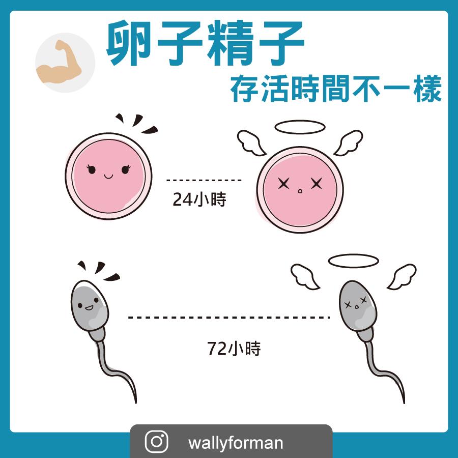 濃度 改善 精液
