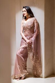 Actress Pragya Jaiswal Transparent Saree Stills
