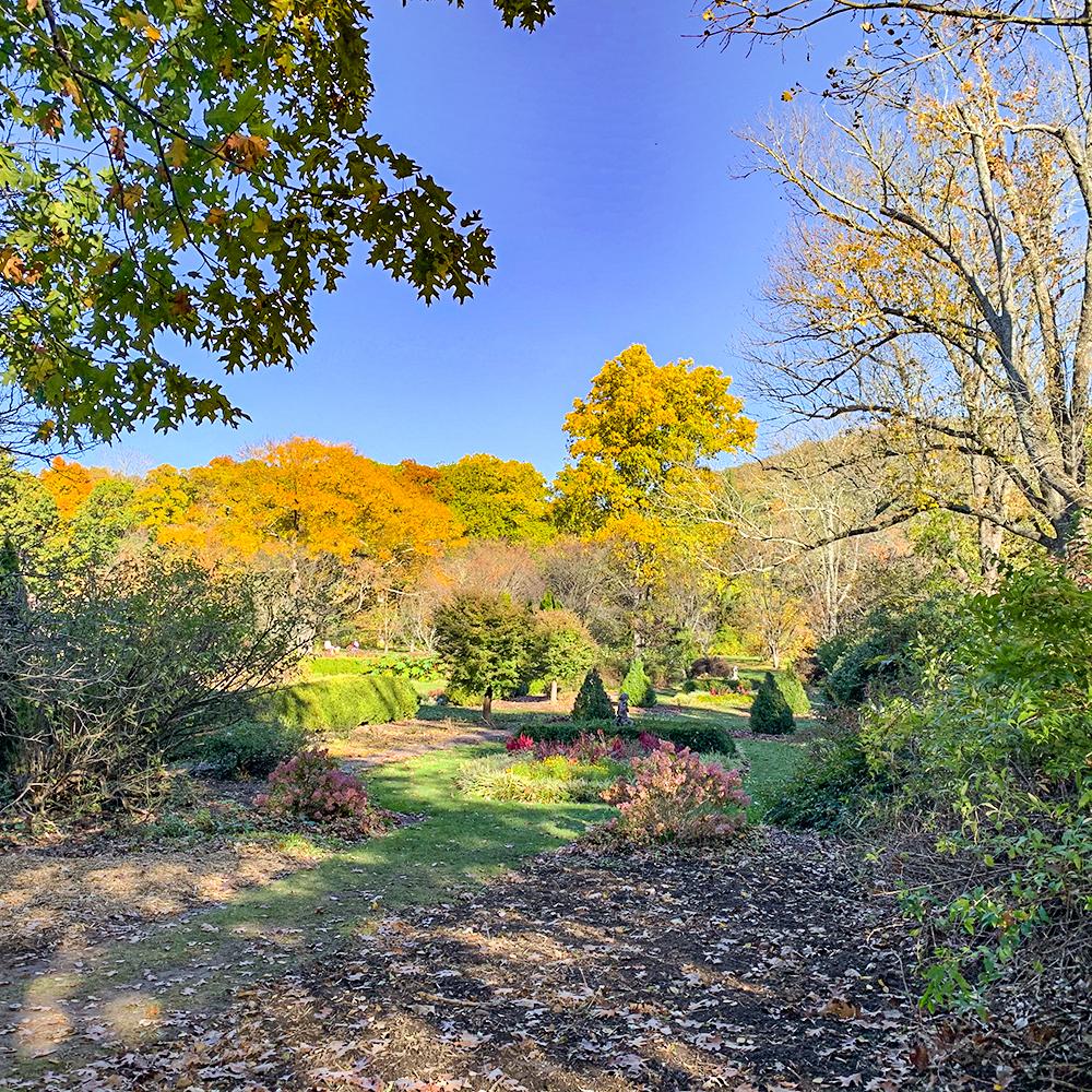 New Jersey Botanical Garden, Fall, 2020