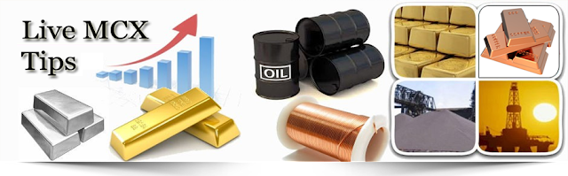 Commodity Updated Tips : 23 Feb 2017