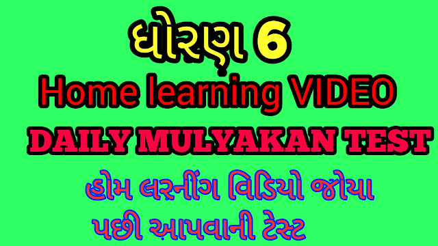 STD 6 HOME LEARNING DAILY MULYANKAN TEST