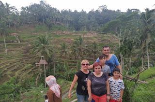 Tegalalan Rice Terraces o Arrozales de Tegalalan. Isla de Bali. Indonesia.