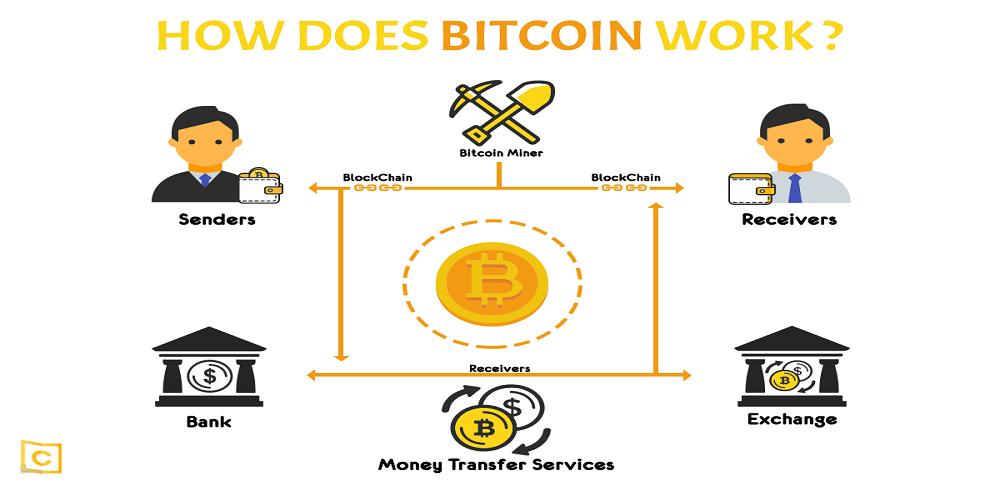 does bitcoin revolution work