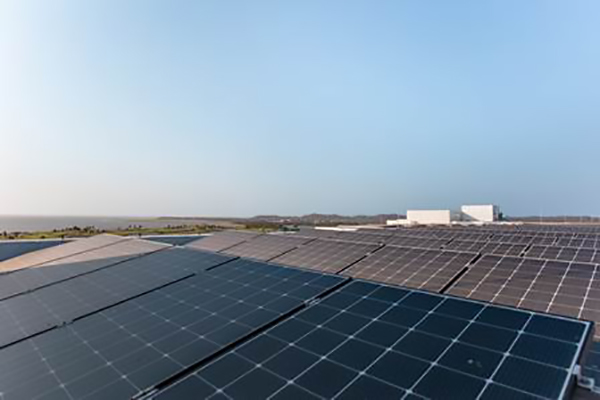 Conrad-Cartagena-paneles-solares