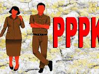 Hore, DPR RI Setujui Revisi UU ASN, Akhirnya PPPK Bisa Dapat Uang Pensiun