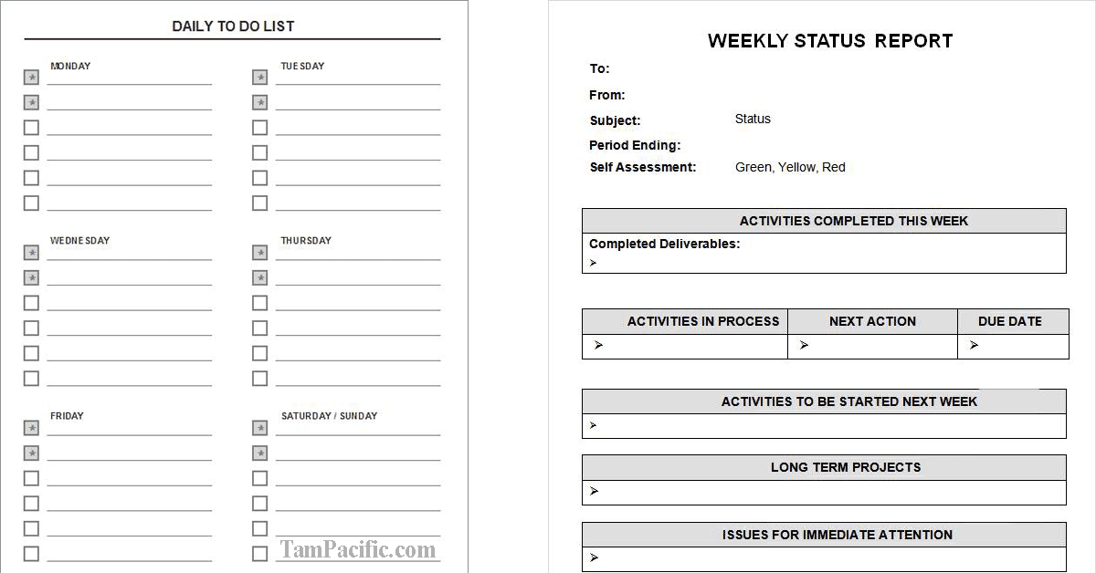 Daily To Do List và Weekly Status Report theo Tony Buổi Sáng
