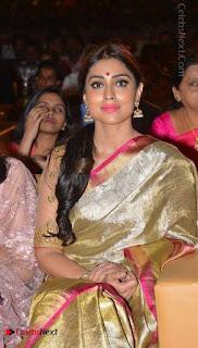Actress Shriya Saran New Images in Silk Saree at Gautamiputra Satakarni Audio Launch  0018.jpg