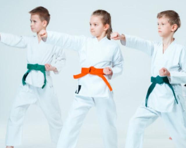 Olahraga Bela Diri Untuk Anak