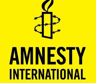 Another Curious Amnesty Int'l's Selective Justice in Nigeria,  By Gabriel Onoja
