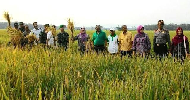 Dirjen Psp Kementerian Pertanian Ri Kunjungi Kodim Bojonegoro