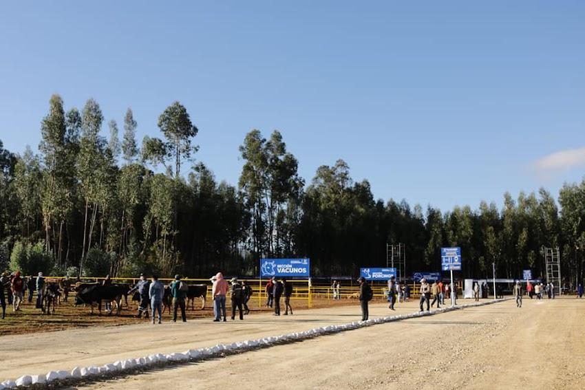 Nueva plaza pecuaria de Cajabamba - fotos y video